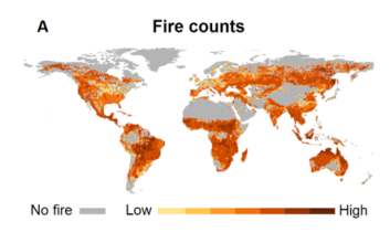 Increase In Wildfire Frequency And Severity Is It Real Early - Western us fire map